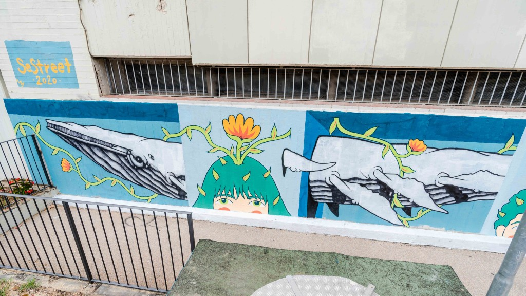 Murales dietro la coop